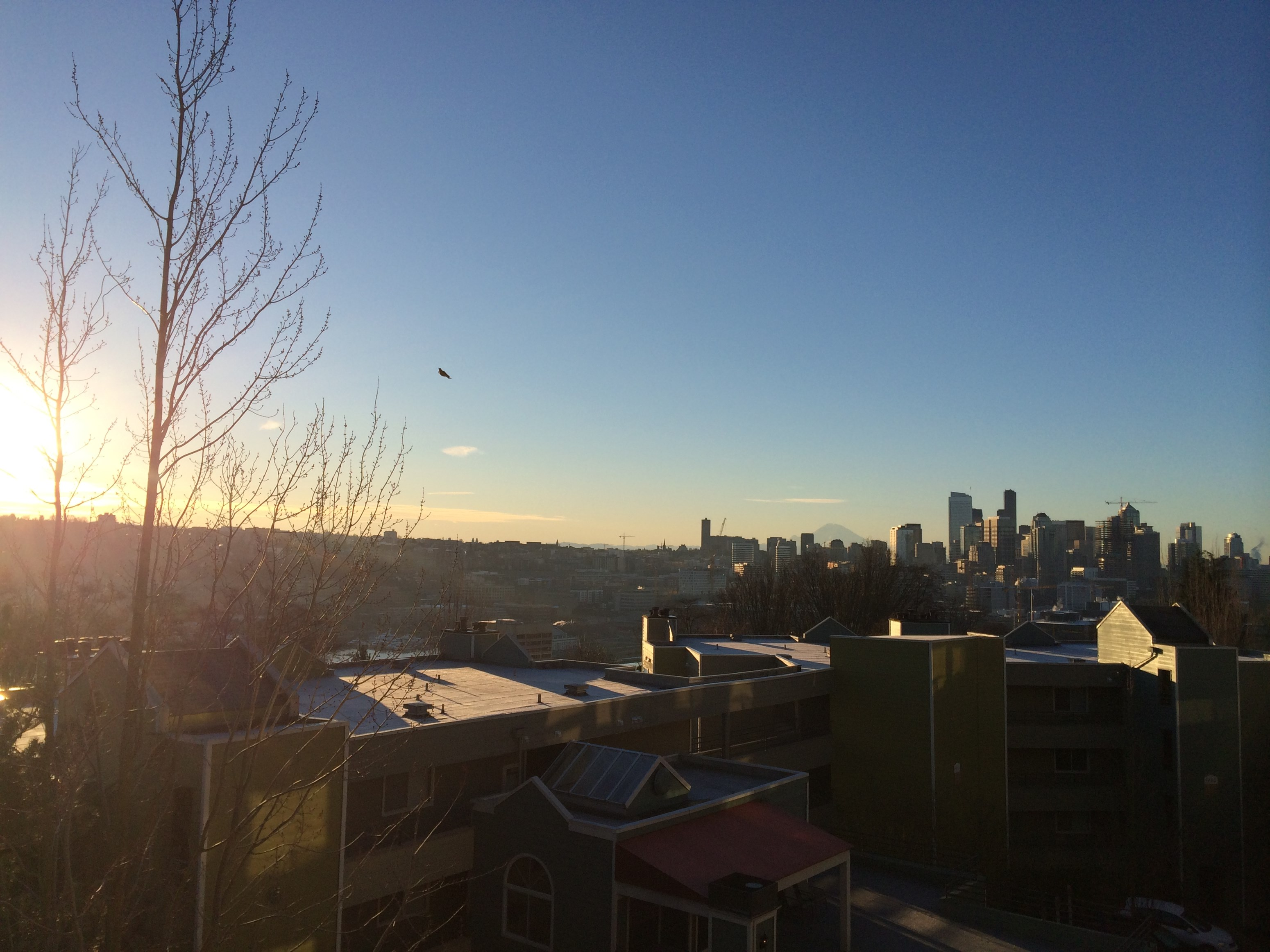 Beautiful Lake View 2b 1b Apartment Close Seattle Downtown