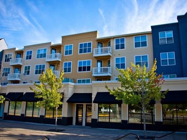 1 Bedroom Apartment To Rent In Beaverton Or Single Bedroom Apartment 1bhk Flats Rentals
