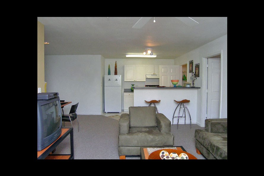 350 All Utilities Included 1 BHK Apartments And Flats In Raleigh NC 897