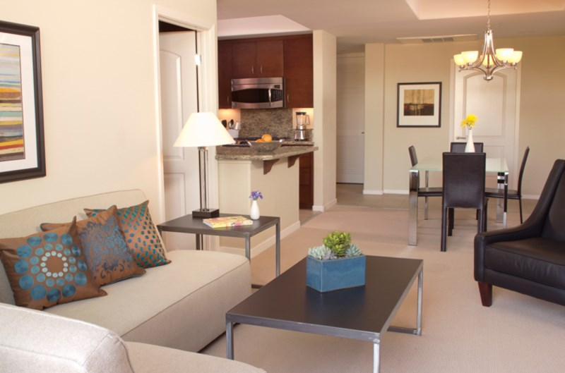Furnished One Bedroom Apartment. 1 Bedroom Apartments for Rent in San Francisco  CA   Single