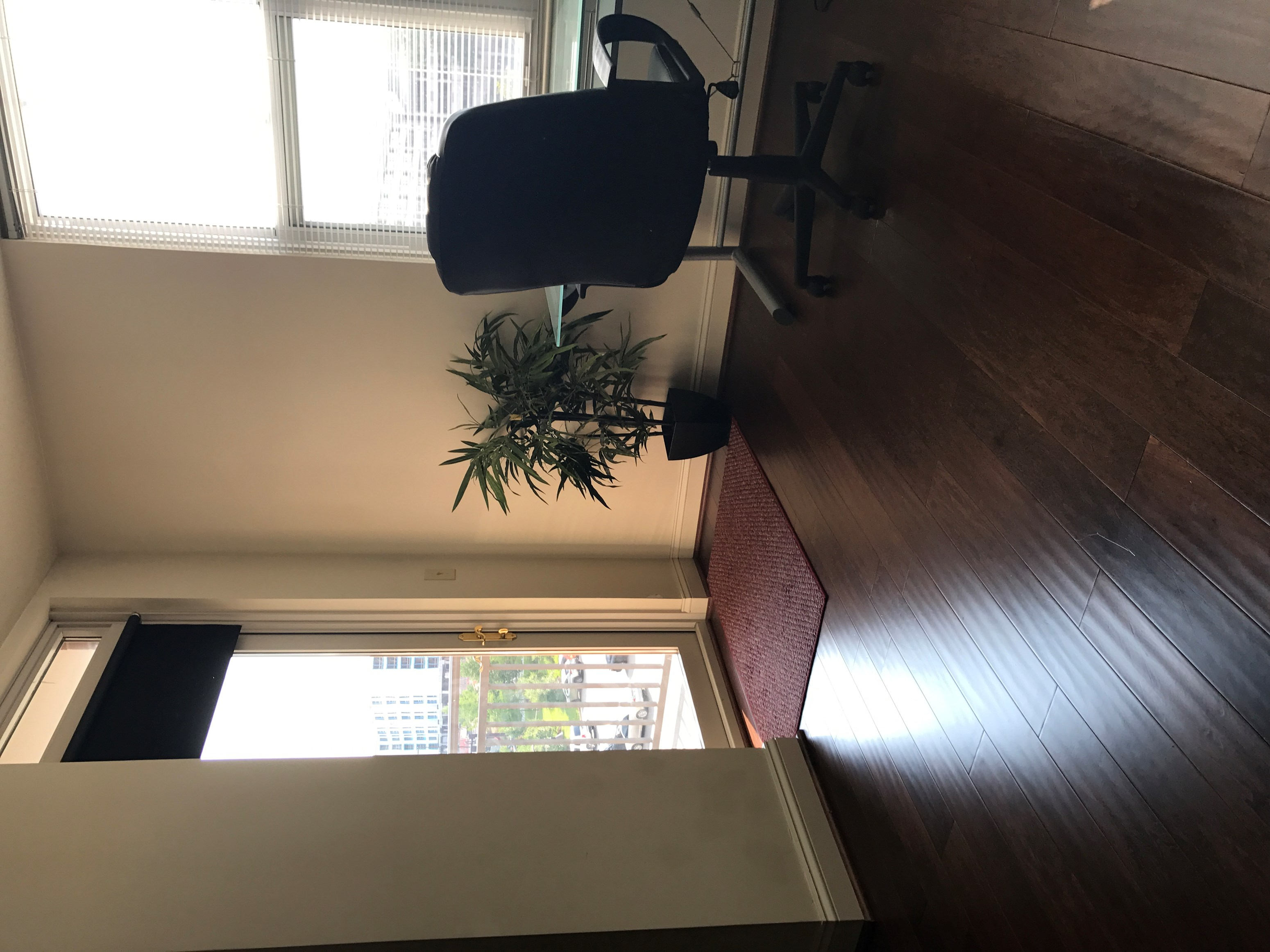 Beautiful One Bedroom Condo To Rent Near The Weihle Metro In Reston