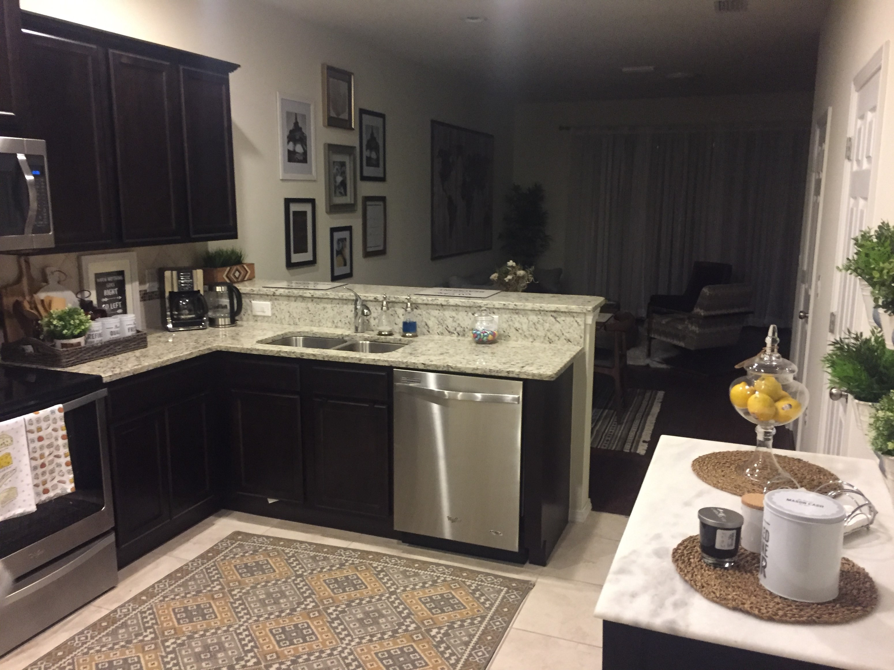 100 1 Bedroom Apartments Near Usf One