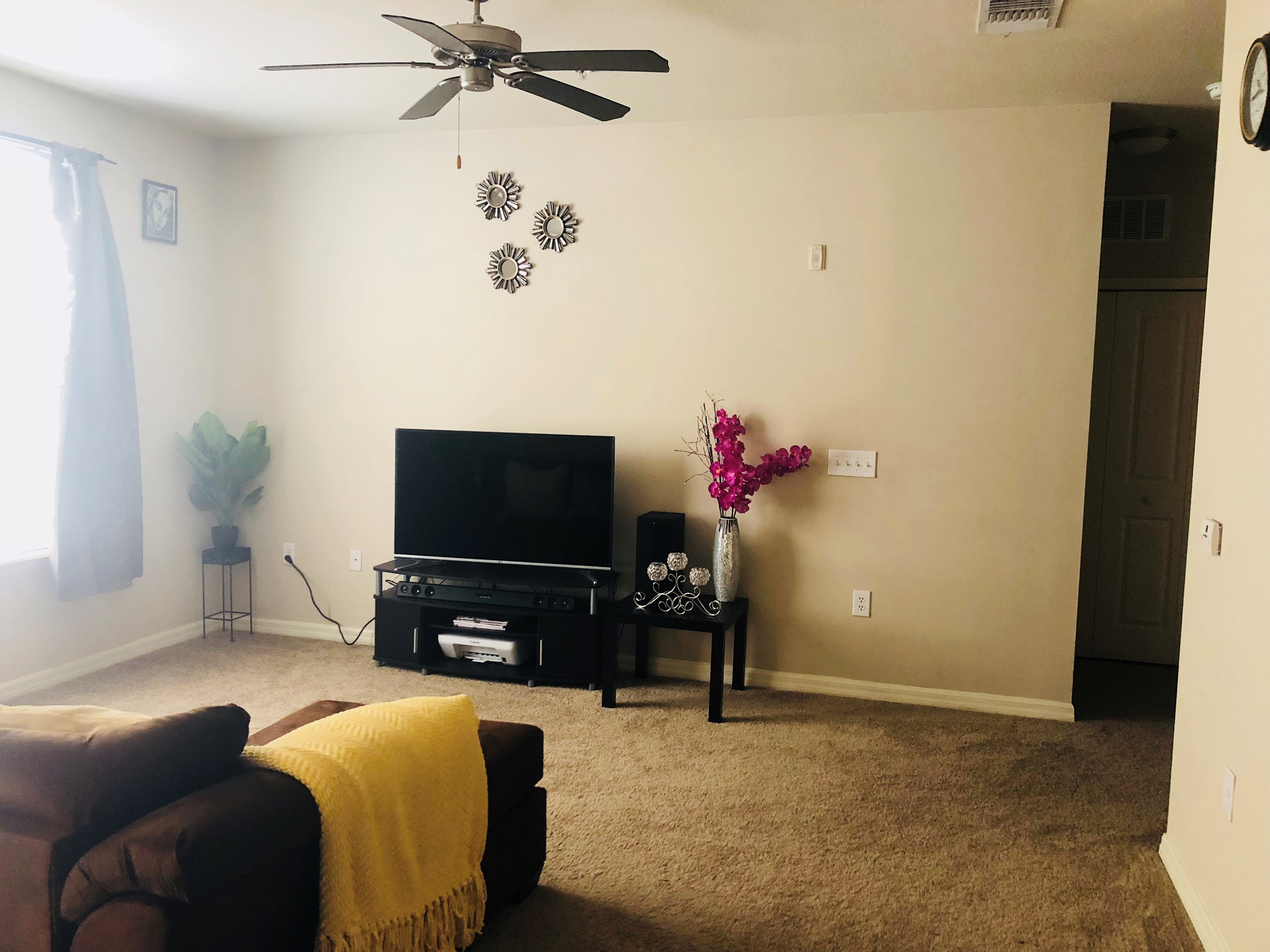 Apartment near University of South Florida USF in Tampa FL