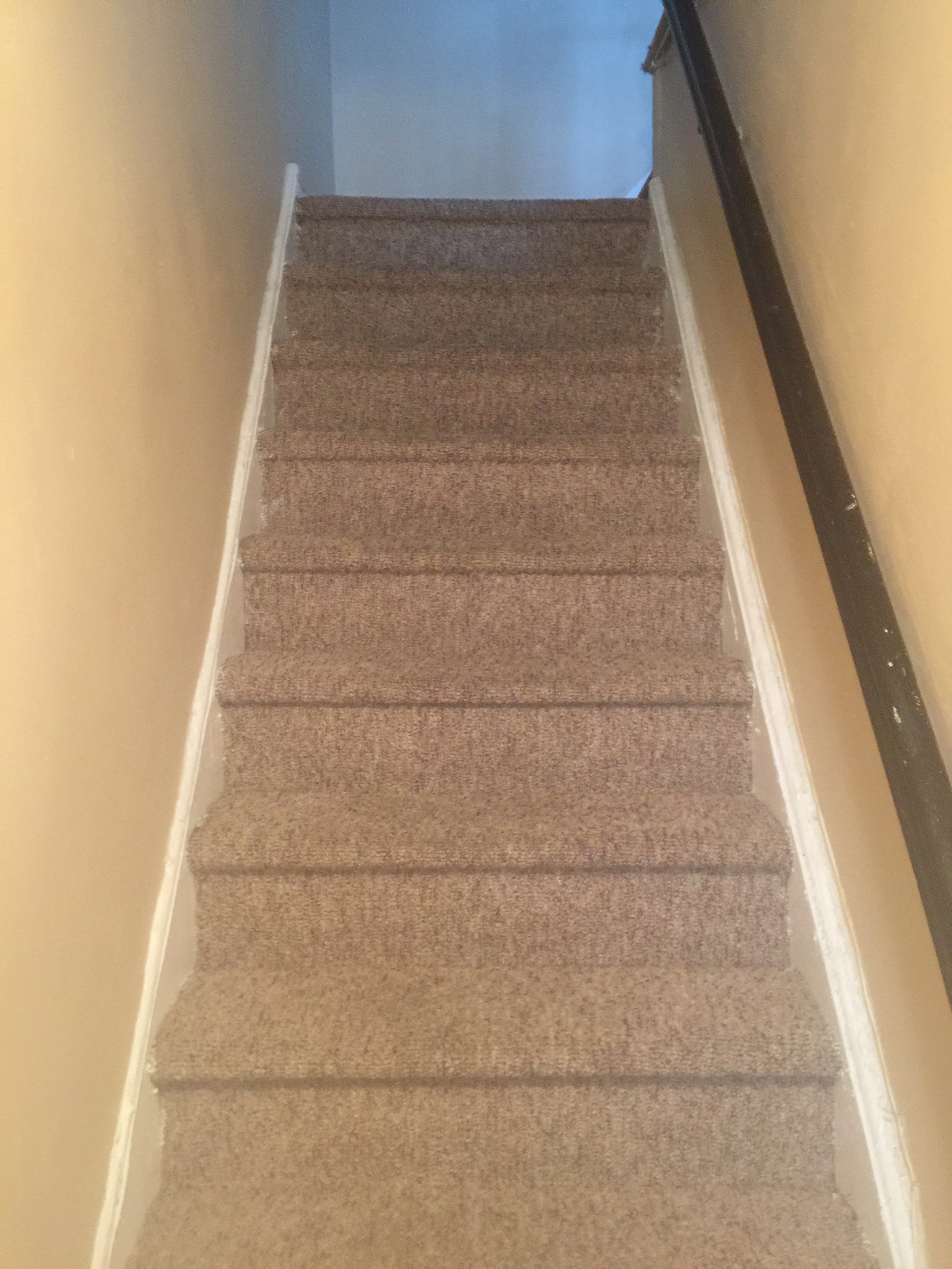 2Bed 1Bath Apartment For Rent Glen Oaks NY 11004