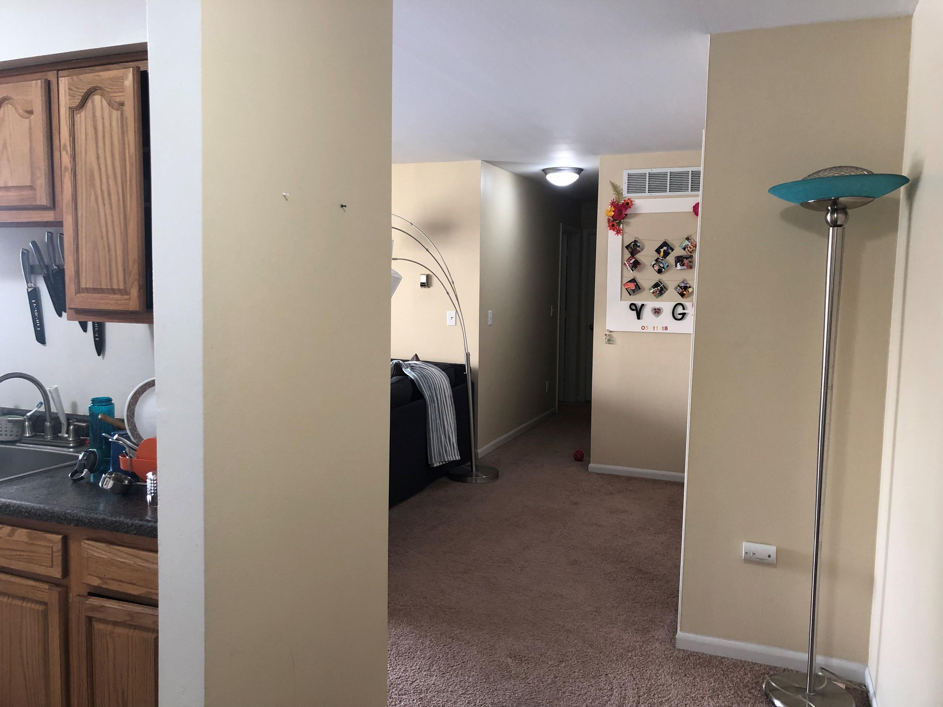 Apartmentflats For Rent In Detroit 1bhk 2bhk 3bhk 4bhk Rentals