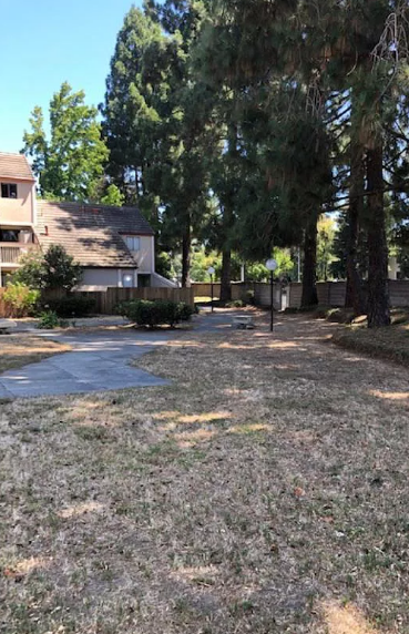 18 Apartments for Rent in Fremont, CA, Flats for Rent