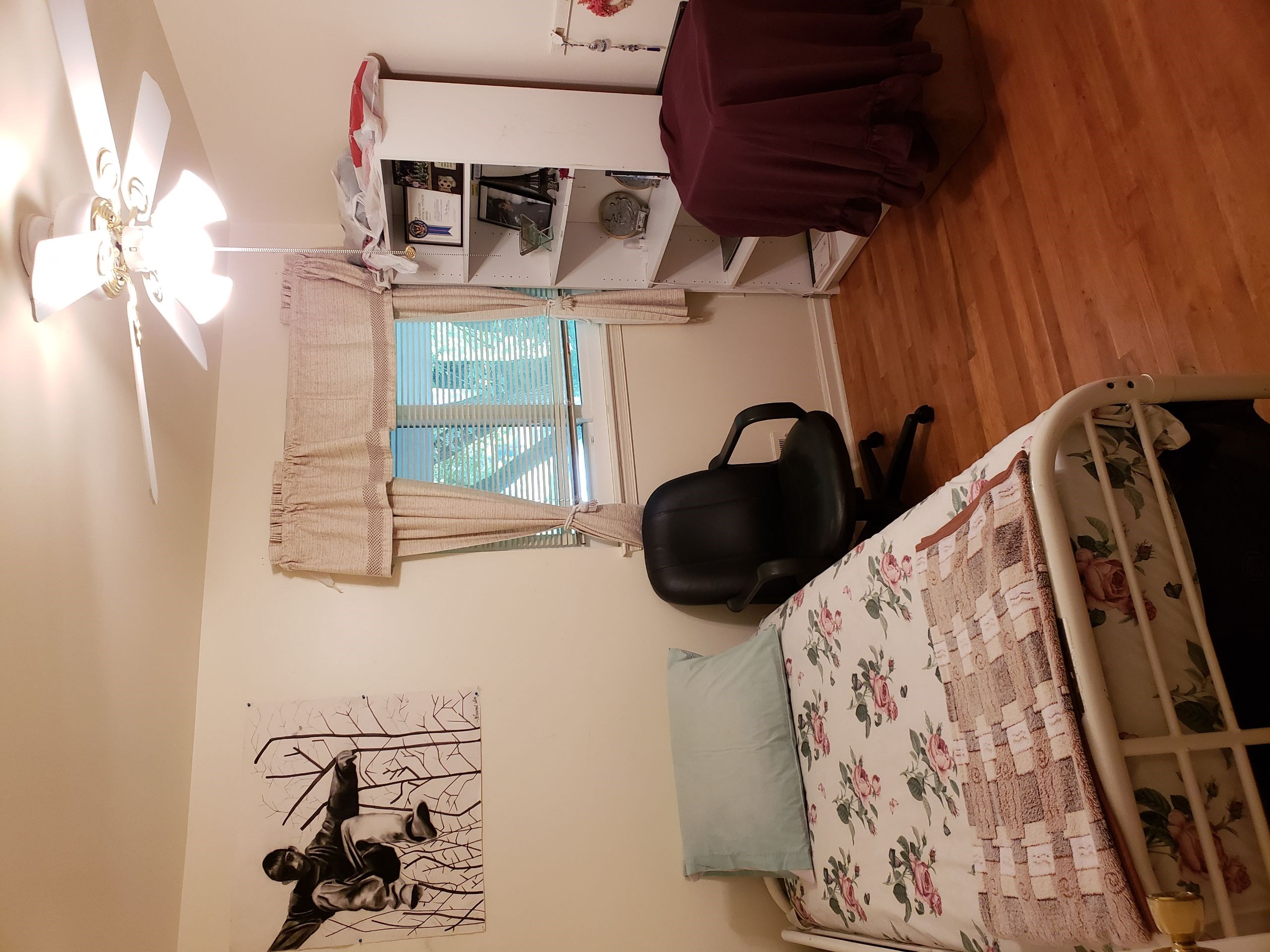 550 Room To Rent And House To Share Female Only In Springfield Va