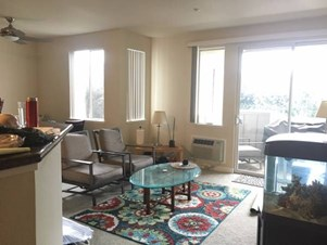 Indian Roommates In Bay Area Rooms Apartments Flats