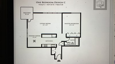 Need A Female Roommate Asap For 1b1b Apt In Downtown Indy