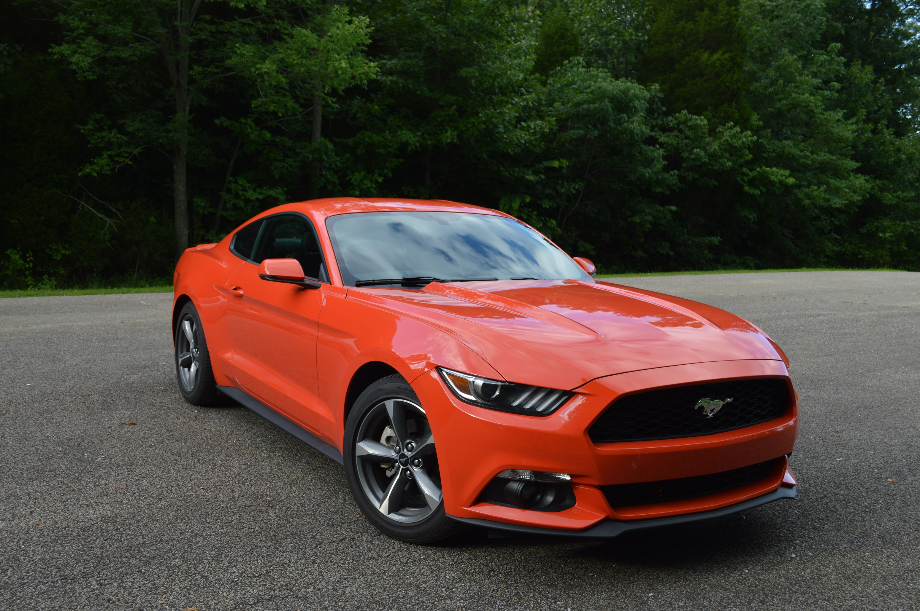 2015 ford mustang ecoboost premium orange color used ford mustang